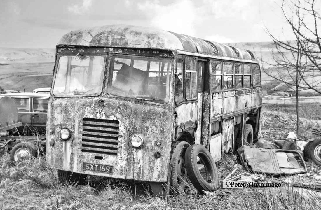Bus B & W with copyright